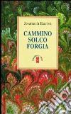 Cammino-Solco-Forgia libro di Escrivá de Balaguer Josemaría