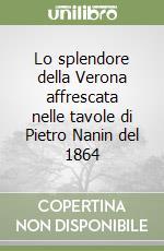 Lo splendore della Verona affrescata nelle tavole di Pietro Nanin del 1864 libro di Cenni Nino