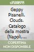 Geppy Pisanelli. Clouds. Catalogo della mostra (Napoli, gennaio 2014)