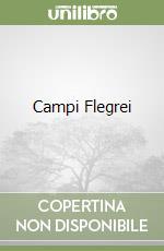 Campi Flegrei libro di Fratta Arturo