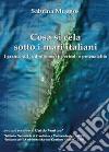 Cosa si cela sotto i mari italiani. I grandi vulcani sommersi: pericoli e potenzialità libro