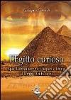 L'Egitto curioso. Spie, ladri di tombe, scioperi e lifting al tempo dei faraoni