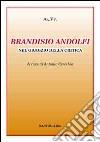 Brandisio Andolfi nel giudizio della critica libro