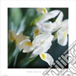Iris poster di Mina Selis