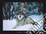 Grey Wolf, Minnesota poster di NATIONAL GEOGRAPHIC