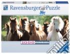 Puzzle 1000 pz - cavalli puzzle