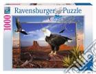 Aquila puzzle