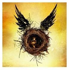 L'ottavo capitolo della mitica saga scritta da J.K. Rowling in prenotazione!