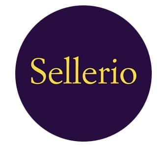 Oltre 100 bestseller Sellerio in offerta!