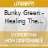 Bunky Green - Healing The Pain
