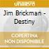 Jim Brickman - Destiny