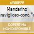 MANDARINO MERAVIGLIOSO-CONC.*O H.IWA