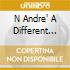 N ANDRE'  A DIFFERENT KIND OF BLUES