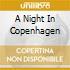 A NIGHT IN COPENHAGEN
