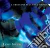 Janis Siegel - A Thousand Beautiful Things