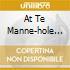 AT TE MANNE-HOLE VOL.2