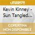 Kevin Kinney - Sun Tangled Angel Revival