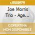 Joe Morris Trio - Age Of Everything