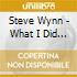 Steve Wynn - What I Did After My Band Broke