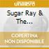 Sugar Ray & The Bluetones - My Life, My Friends, My Music