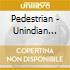 Pedestrian - Unindian Song