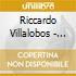 Riccardo Villalobos - Vasco