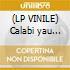 (LP VINILE) Calabi yau space