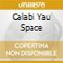 CALABI YAU SPACE
