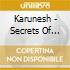 Karunesh - Secrets Of Life