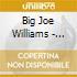 Big Joe Williams - Ess. Blue Archive: Baby Please Don't