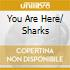 YOU ARE HERE/ SHARKS