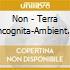 Non - Terra Incognita-Ambient Works 1975-Present