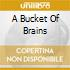 A BUCKET OF BRAINS