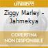 Ziggy Marley - Jahmekya