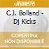 C.J. Bolland - Dj Kicks