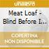 Meat Loaf - Blind Before I Stop / Bad Attitude