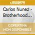 Carlos Nunez - Brotherhood Of Stars