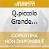 Q.PICCOLO GRANDE AMORE(PICTURE DISC)