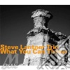 Steve Lantner - What You Can Throw