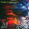 Chicago Underground - Twelve Degrees Of Freedom