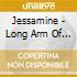 Jessamine - Long Arm Of Coincidence