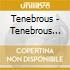 TENEBROUS LIAR