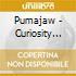Pumajaw - Curiosity Box