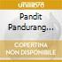 Pandit Pandurang Parate - Chakra Healing
