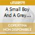 A SMALL BOY AND A GREY HEAVEN
