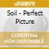 Soil - Perfect Picture