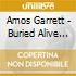 Amos Garrett - Buried Alive In The Blues