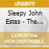 Sleepy John Estes - The Blues
