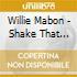 Willie Mabon - Shake That Thing