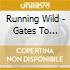 Running Wild - Gates To Purgatory